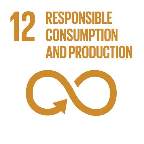E_INVERTED-SDG-goals_icons-individual-cmyk-12