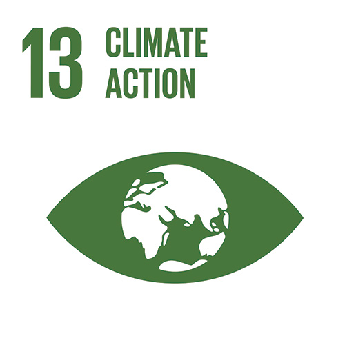 E_INVERTED-SDG-goals_icons-individual-cmyk-13