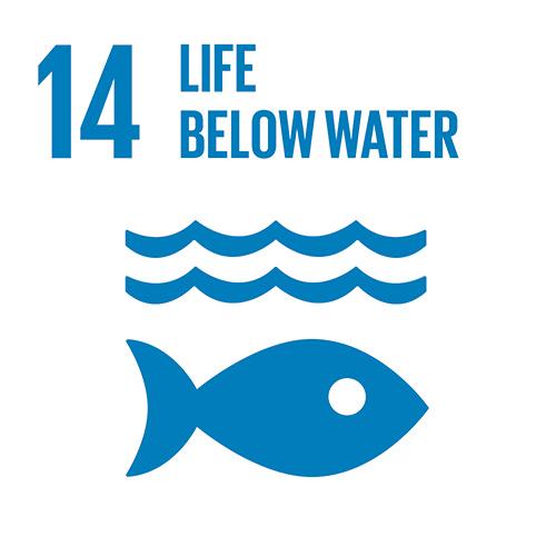 E_INVERTED-SDG-goals_icons-individual-cmyk-14