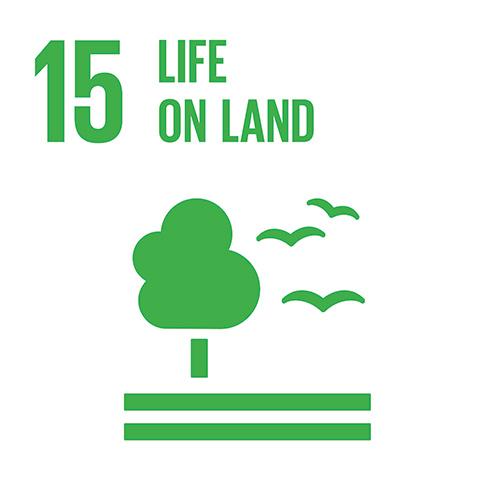 E_INVERTED-SDG-goals_icons-individual-cmyk-15